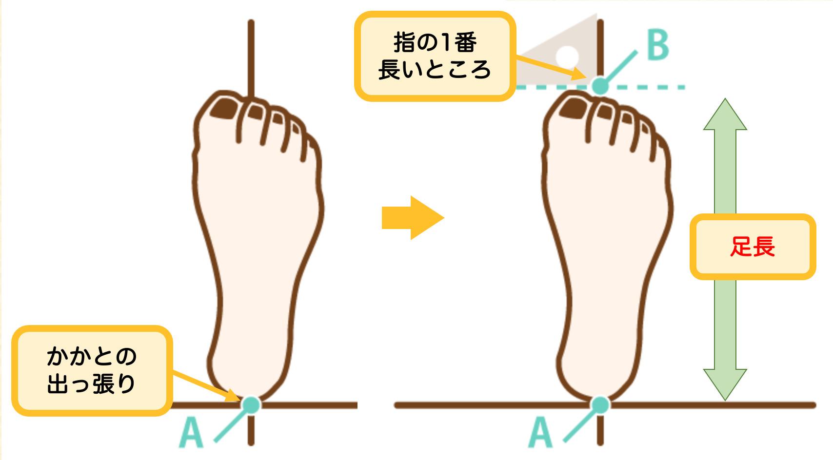 足長の測り方