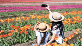 花畑で写真を撮る親子